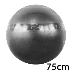 cPro9 ABS Guide Træningsbold 75 cm Sort
