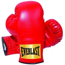 Everlast Youth Boxing Gloves. 6 oz.