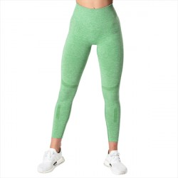 ICANIWILL Queen Mesh 7/8 Tights Light Green