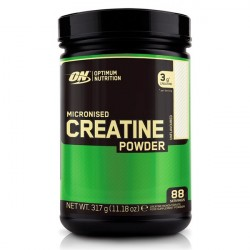 Optimum Nutrition Creatine Unflavored 317g
